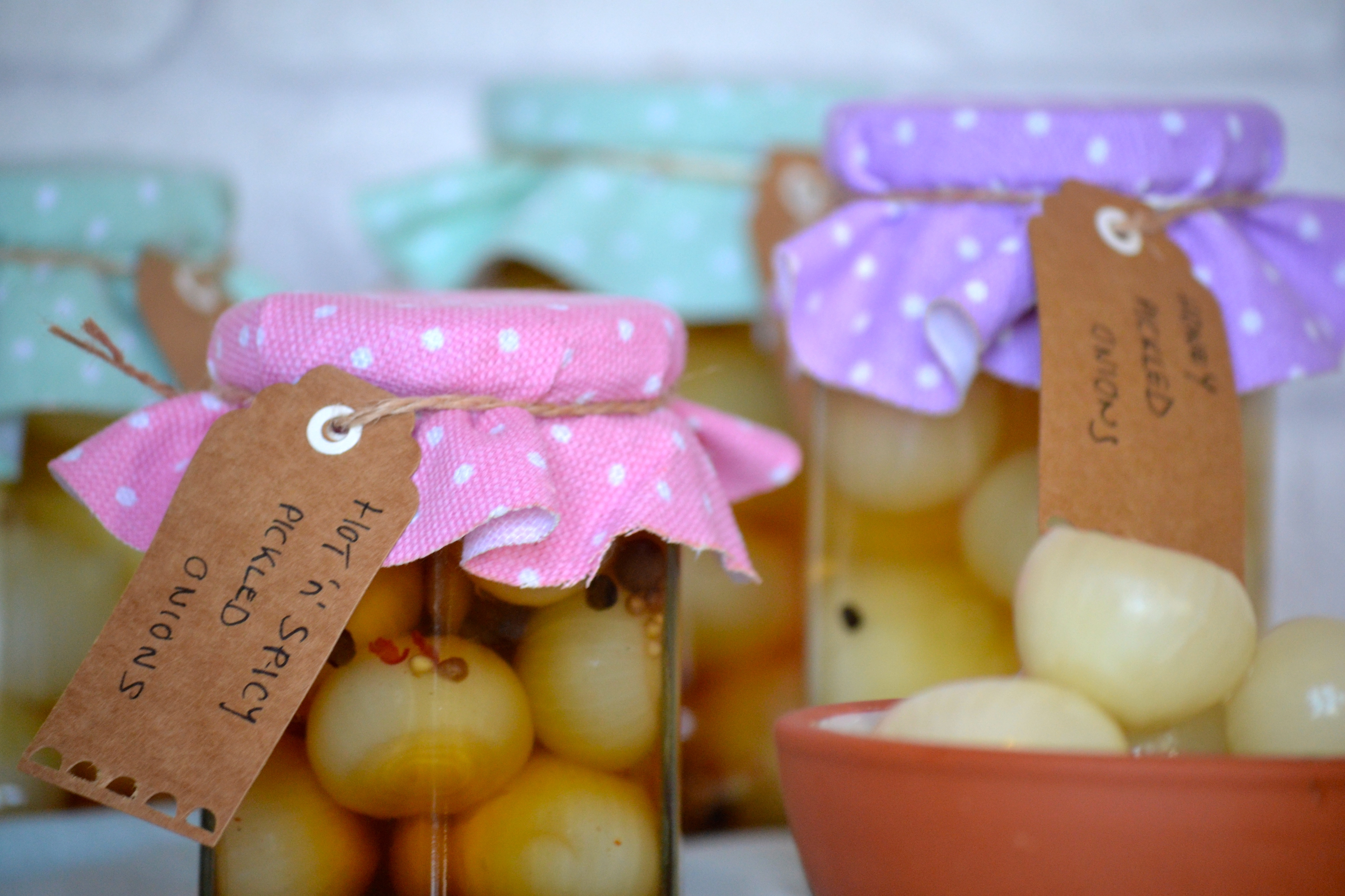 DIY Pickled Onions - The Foodie Family Blog